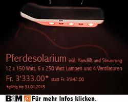 41-BundM_Solarium_250x200px