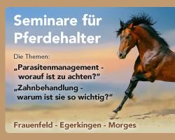 56-Banner_Pferdeseminare_250x200_d_01